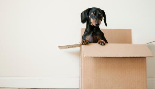 ミニマリストと引っ越し。半日で終わる荷造りの方法と断捨離のこと