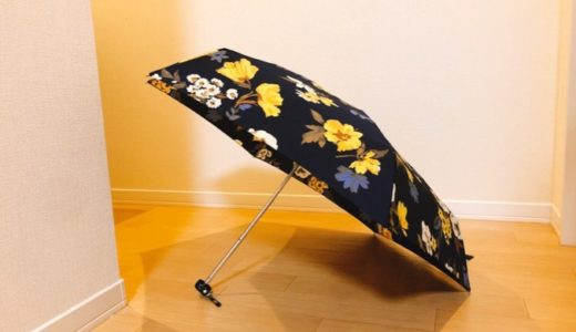 ミニマリストの傘事情。長傘不要、折りたたみ傘1本で問題なしという結論